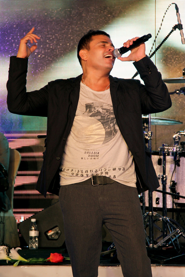 Amr Diab, New Year's Eve 2012