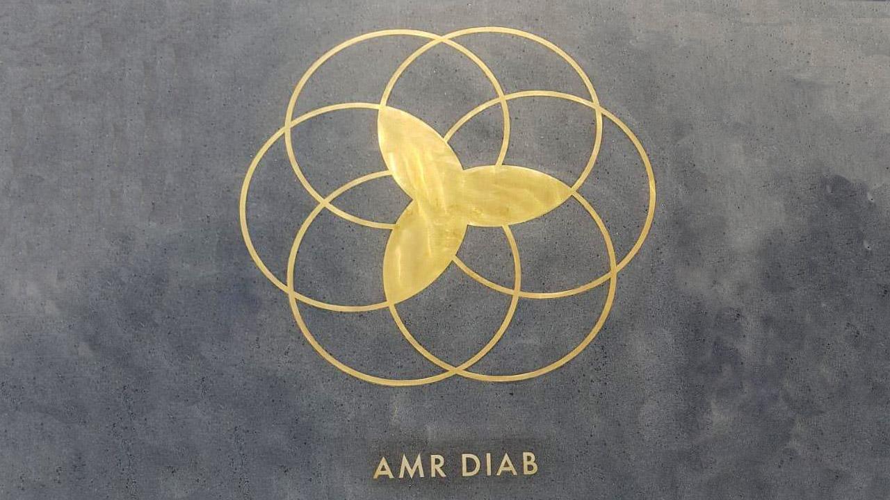 Amr Diab, Dubai Stars